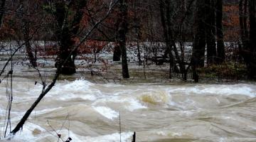Visoke vode - december 2017 - Kolpa